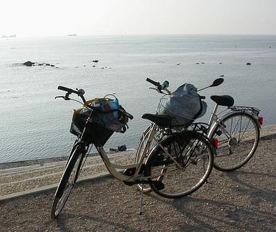 le due biciclette (Grazie Torre Luciana!)