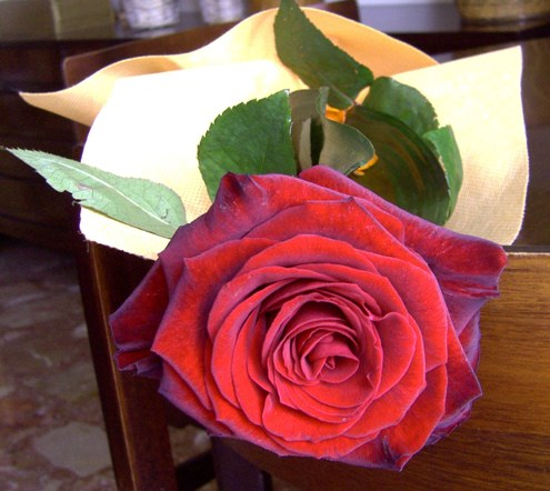 rosa-primopiano.JPG