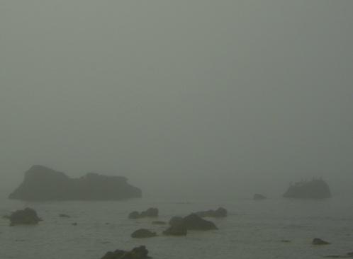 scoglio-dei-cormorani-nella-nebbia.JPG