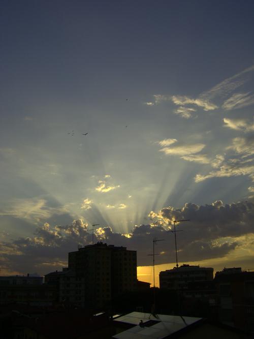 tramonto-con-raggi-e-gabbiani_mini.jpg